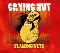 Flaming Nuts Album Cover