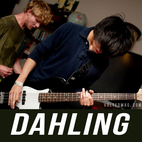 Dahling band - Volted